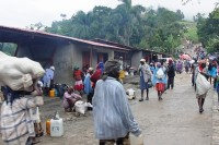 Haiti_MD4