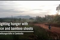 Kambodscha_MD1